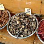 Shiitake gljive - hranjive i ljekovite
